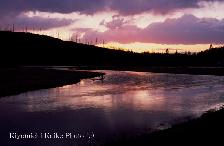 イエローストーン国立公園の画像 p1_38